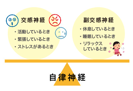 和歌山市人気整体|腰痛ページ8